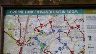 Wandeling rond Boom, Tomorrowland en de schorre.